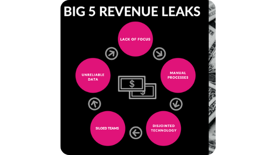 big 5 revenue leaks